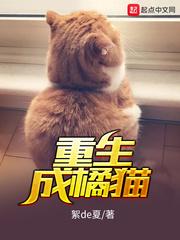 重生成橘猫